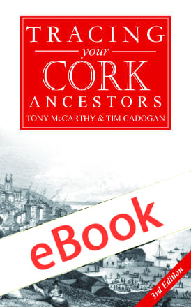 Cork-Book-Cover-V1-6-ebook